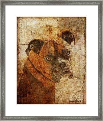 The Question Framed Print by Judy Wood