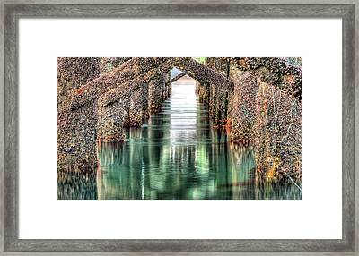 The Quiet Of Green Framed Print