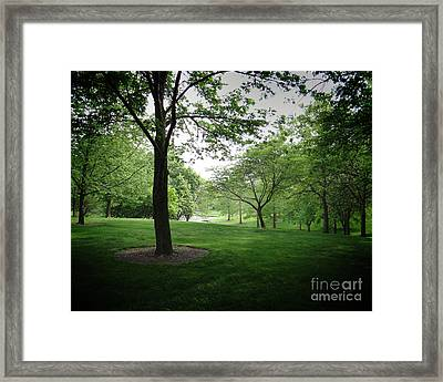 The Quiet Park Framed Print by Bedros Awak