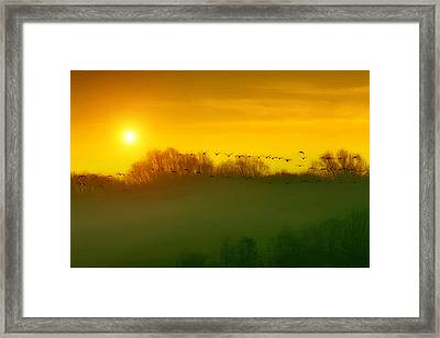 The Race Home Framed Print