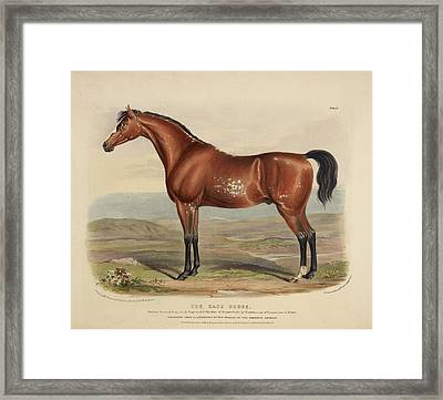 The Race Horse Framed Print by British Library