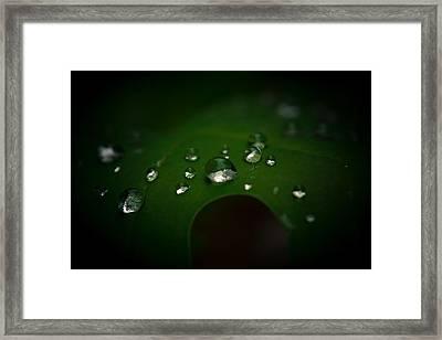 The Rain Fell Framed Print by Shane Holsclaw
