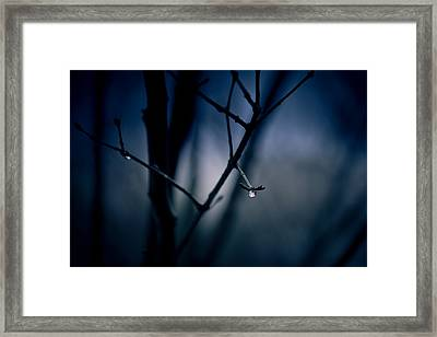 The Rain Song Framed Print by Shane Holsclaw