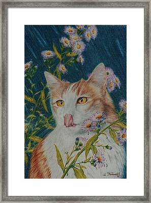 The Rain Taster Framed Print by Jane Santorumn