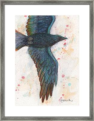 The Rainbow Thief Framed Print