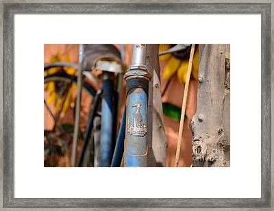 The Raleigh Framed Print