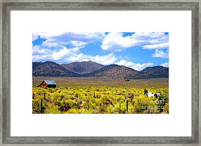 Framed Print featuring the photograph The Ranch by Marilyn Diaz