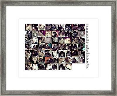 The Rat Retreat Yearbook Framed Print