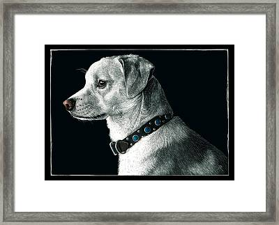 The Ratter Framed Print