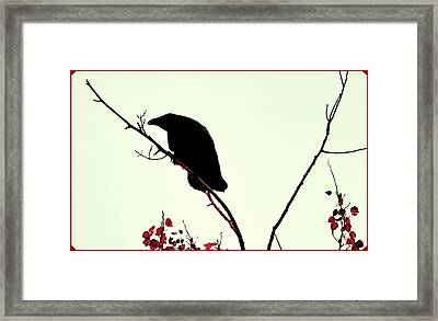 The Raven Framed Print by Annie Pflueger