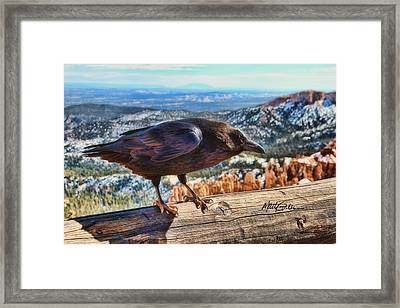 The Raven Framed Print by Marti Green