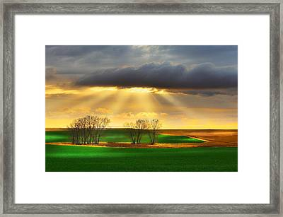 The Ray Of Light Framed Print
