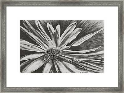 Framed Print featuring the drawing The Reacher by Yolanda Raker