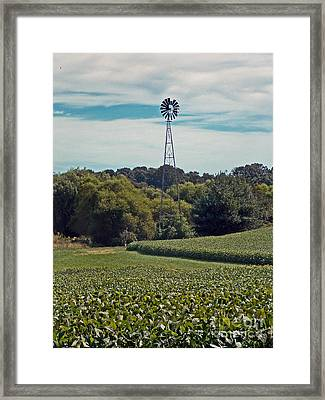 The Real Greening Framed Print by Skip Willits