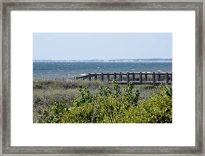 The Real Gulf Coast Framed Print by Debra Forand