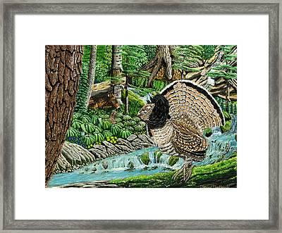 The Real Thunder Bird  Framed Print by Carey MacDonald