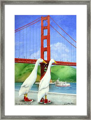 The Red And White Fleet... Framed Print by Will Bullas