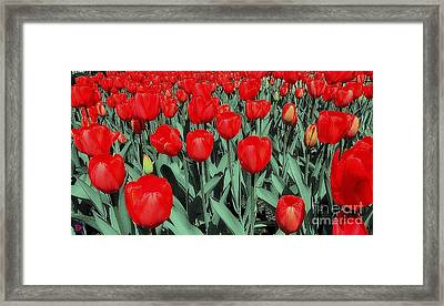 The Red Framed Print by Andy Heavens