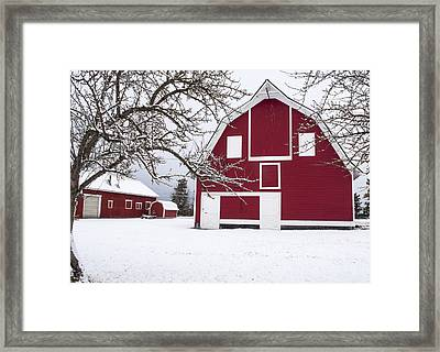 The Red Barn Framed Print by Fran Riley