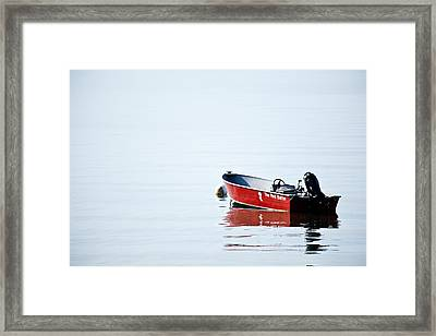 The Red Baron Framed Print by Karol Livote