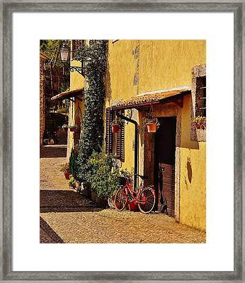The Red Bicycle Framed Print by Dany Lison