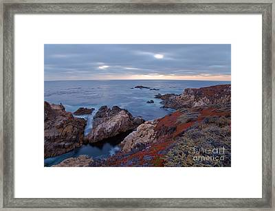 Framed Print featuring the photograph The Red Carpet by Jonathan Nguyen