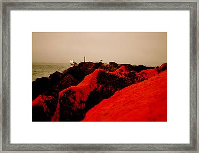 The Red Dawn Framed Print by Sheldon Blackwell