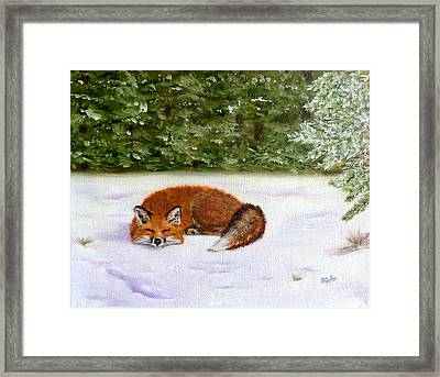 The Red Fox Of Winter Framed Print