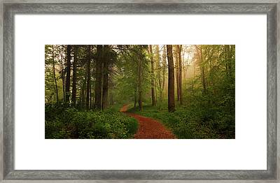 The Red Path. Framed Print