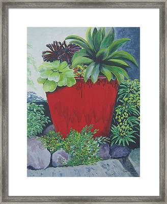 The Red Pot Framed Print