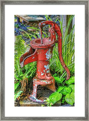 The Red Pump Framed Print by Kenny Francis