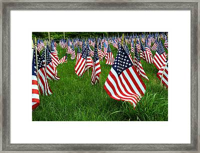 The Red White And Blue  American Flags Framed Print by Donna Doherty