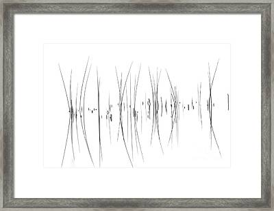 The Reeds Framed Print by Andrea Kollo