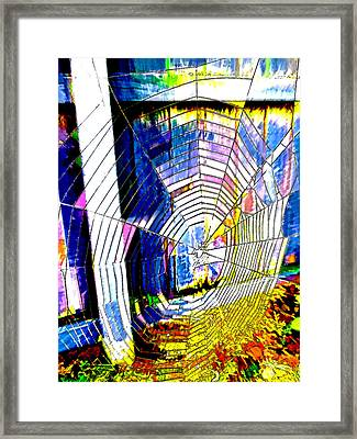 The Refracted Cobweb Framed Print by Steve Taylor