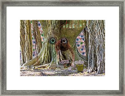 The Reincarnation Of Seeing Framed Print by Betsy Knapp