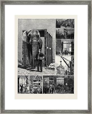 The Removal Of Jumbo Framed Print