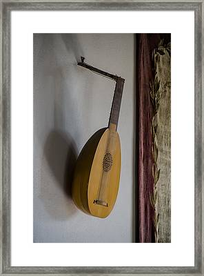 The Renaissance Lute Framed Print by Bill Cannon