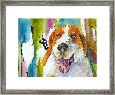 The Rescue Me Dog Framed Print by P Maure Bausch