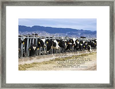 The Rest Is History Framed Print