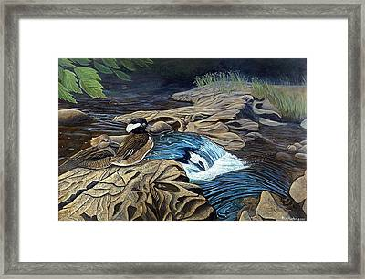 The Resting Place Framed Print by Rick Huotari