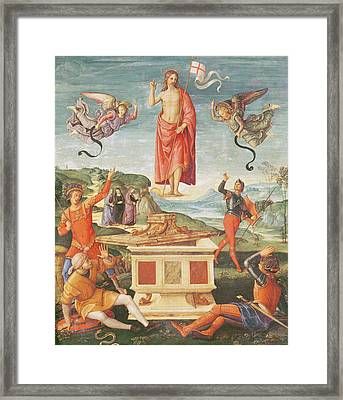 The Resurrection Of Christ, C.1502 Oil On Panel Framed Print by Raphael