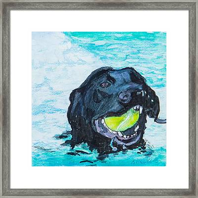 The Retrieve Framed Print by Roger Wedegis