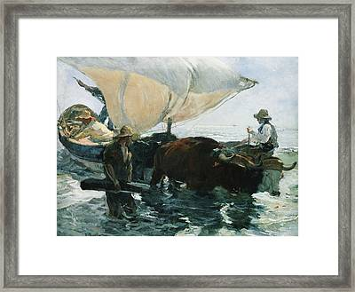 The Return From Fishing Framed Print by Joaquin Sorolla y Bastida