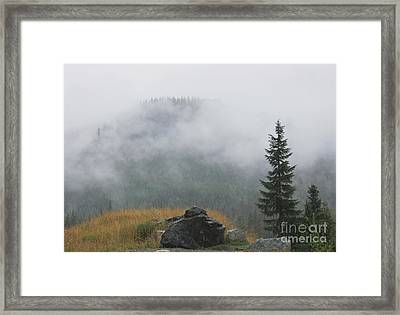 The Revealing I Framed Print by Amanda Holmes Tzafrir