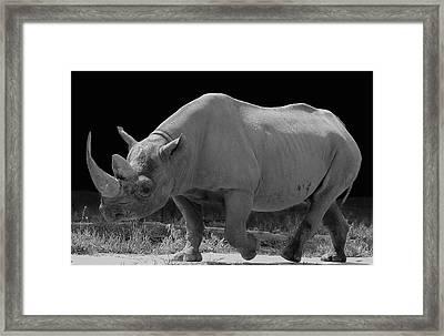 The Rhino Framed Print by Art Spectrum
