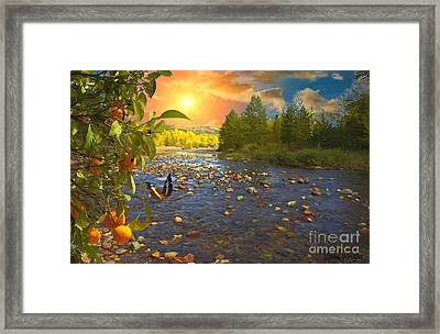 The Riches Of Life Framed Print