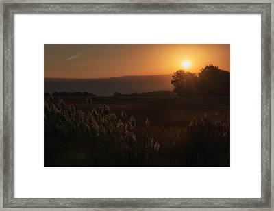 The Rising Framed Print by Darlene Bushue