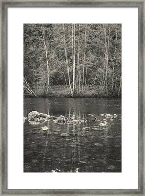 The River II Framed Print