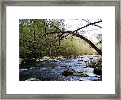 The River Runs Framed Print by Kimberly Elliott
