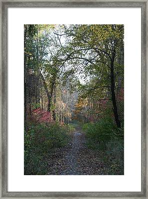 The Road Ahead No.2 Framed Print by Neal Eslinger
